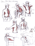 Seth - Body Type and Rot/Muscle Study by Olive-Owl