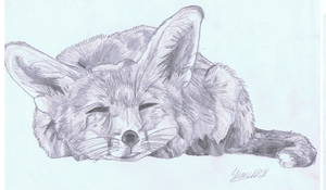 Red fox relax by ConkerTSquirrel
