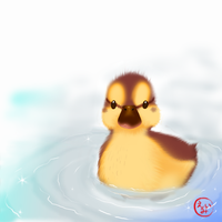Baby Duck by Pink-world