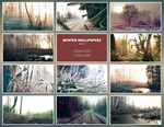 Winter Wallpapers by ivarhill