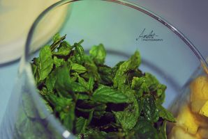 The mint and the lemon by Andriandreo