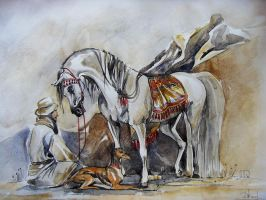 arabian horserider by dashket