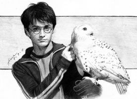Harry Potter and Hedwig by FrankGo