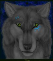 .:Whimper:. by CunningFox