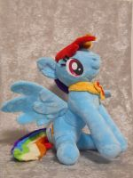 The other side of the Rainbow.. Dash by PlushPrincess