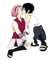 NS: Sasusaku by LizThatsMe
