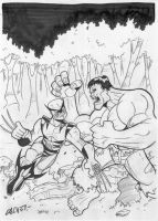 Hulk vs Wolverine by sergicr