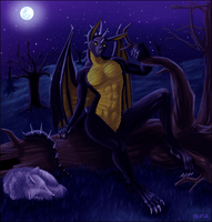 In the Moonlight by Sharkliver