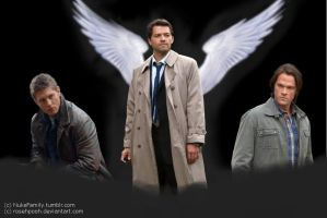 Team Free Will by Rosehpooh