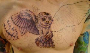 owl- in progress-2 by seanspoison