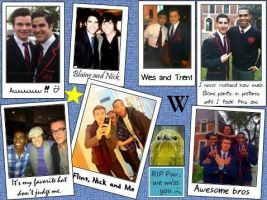 Warbler Scrapbook page 3 by ChadtheFab