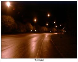 Wet Road by firelight