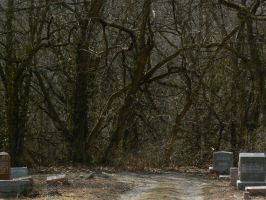 Road Forest and Tombstones by BohemianHarlot