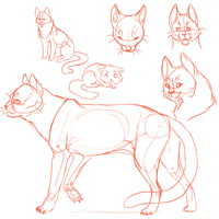Cat Doodles by ZombieMutt13