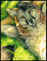 DayDreaming by vantid