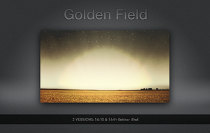 Golden Field by balderoine