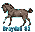 Braydan 82 Tag by sVa-BinaryStar