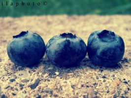 Blueberries by Lilith1995