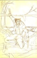 Wolverine 01 by Patricin