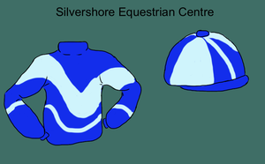 SEC Jockey Silks by silvershore