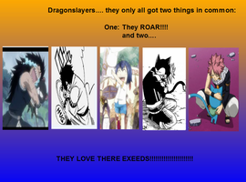 Dragonslayers love...their cats by KMO27