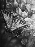 Graphite Drawing of Butterfly and Flowers by kakosuranosx