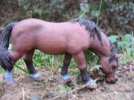 Riding Horse Schleich by MelodyPhoto