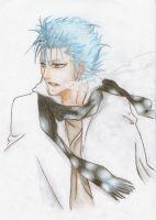 Colored Grimmjow J. by Pinjachi