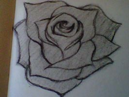 Sketched rose 09072011 by crochetamommy