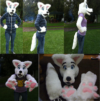 White canine partial for sale by CamberTwinkles