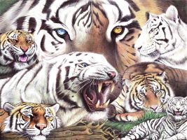Ballpoint pen Art - Big Cats by ArtisAllan