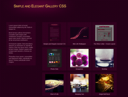 Simple and Elegant Gallery CSS by VeraCotuna