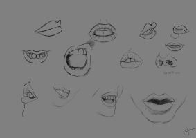 Mouth and lips study by Programmega