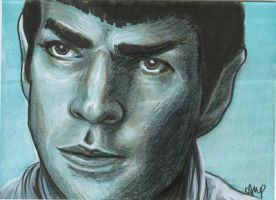 Star Trek PSC - Spock 2 by AshleighPopplewell