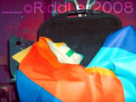 Peace flag by CarmenTheRiddLer