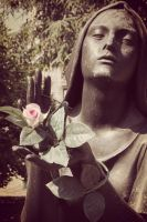The rose in her hands by Martigot
