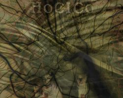 Hocico by versionfiv