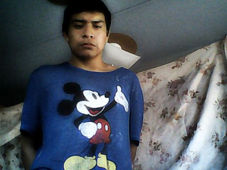 Joe In This Mickey Mouse Shirt 2017 by sb12933