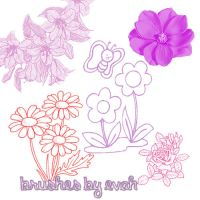 brushes flowers by EditionsbyEvah