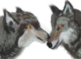 Wolves Couple v883 by lv888