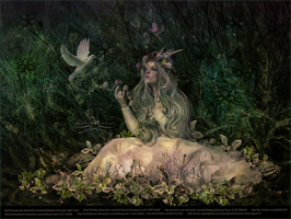woodland fairy by vidimento