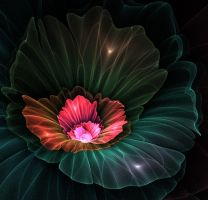 Stone flower. by Kondratij