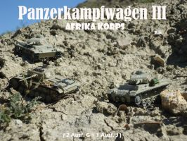 Panzer III Ausf G operational! by DingoPatagonico