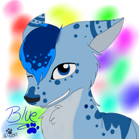 Blue The Wolf (2014 look) by dreamer-the-wolf-3