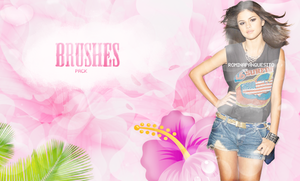 N3W BRUSH3S GRAN M3GA PACK by Romina-panquesito