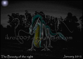 The beauty of the night by Ikro2009