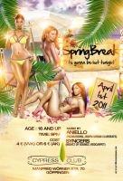 Springbreak Flyer by DeityDesignz