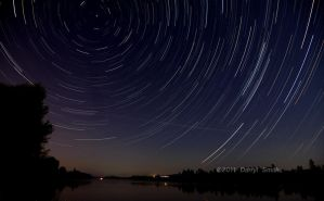 Star Trails by DARRYL-SMITH