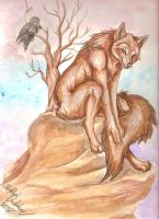 Coyote on a Rock by forensicfox