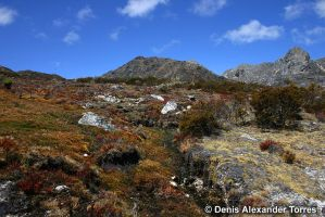 High Andean Landscape by torreoso